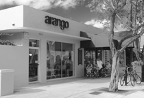 arango south miami